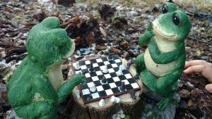 frogs next move
